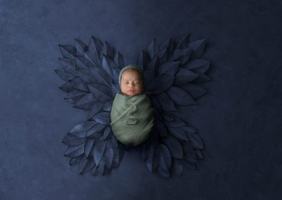 belmont studio newborn boy