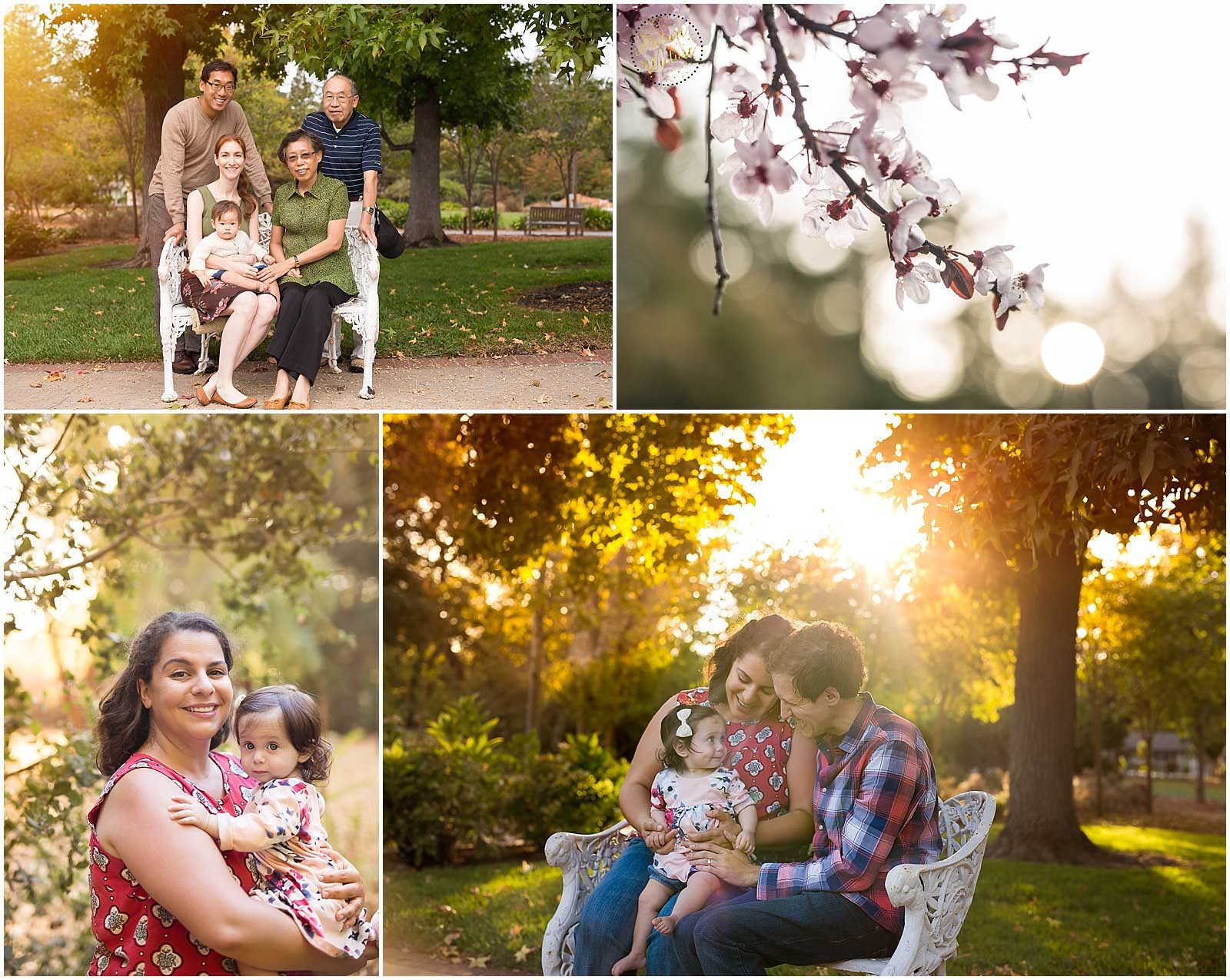 Fall Family Photos in Palo Alto